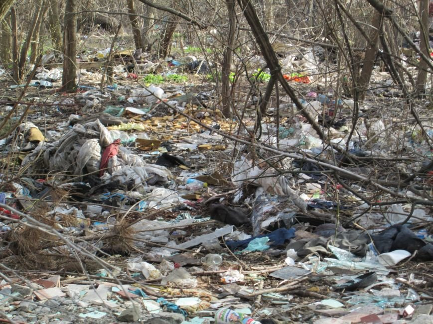 28b8f7baedd221e0e3afacb04159b313 Возле одесской школы местные жильцы устроили свалку мусорных отходов