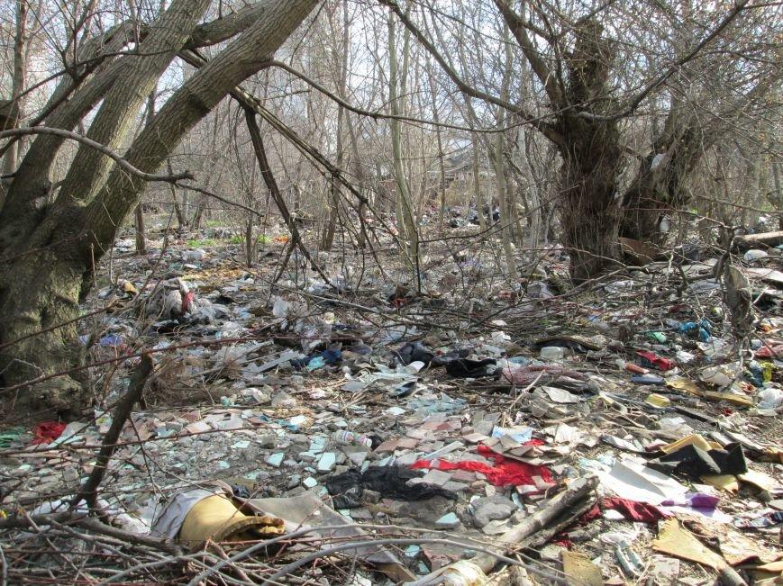 54b70533fedac9697f1e717200f6574e Возле одесской школы местные жильцы устроили свалку мусорных отходов