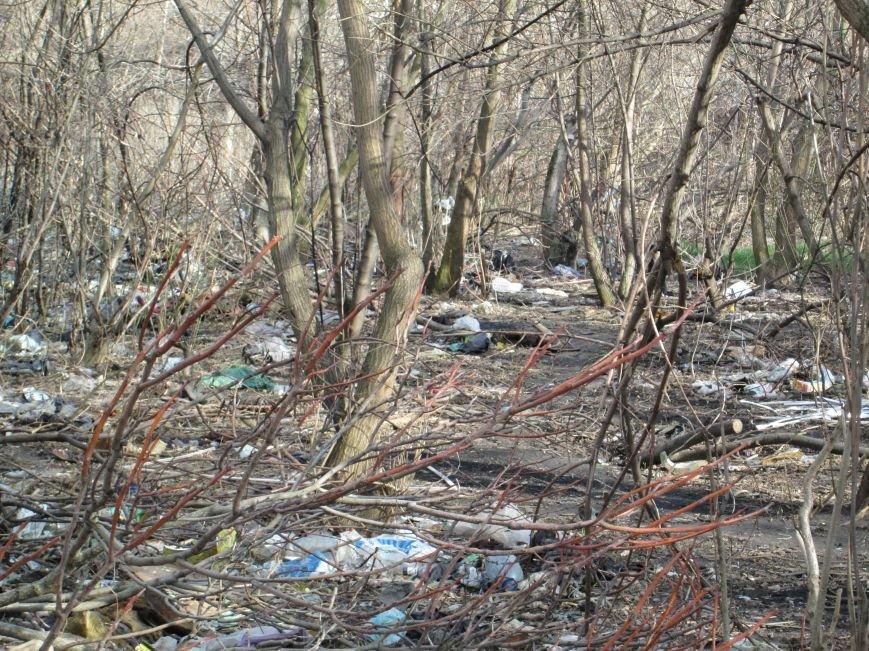 964852af21472034716cadc2a8731a3c Возле одесской школы местные жильцы устроили свалку мусорных отходов