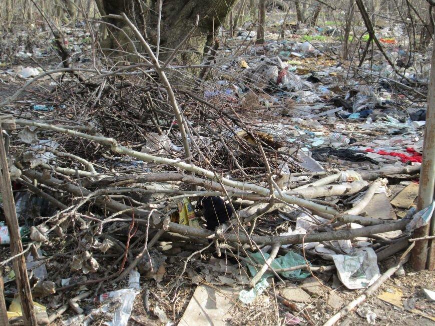 b9bf929608b516d44a1e5b5409ce7921 Возле одесской школы местные жильцы устроили свалку мусорных отходов