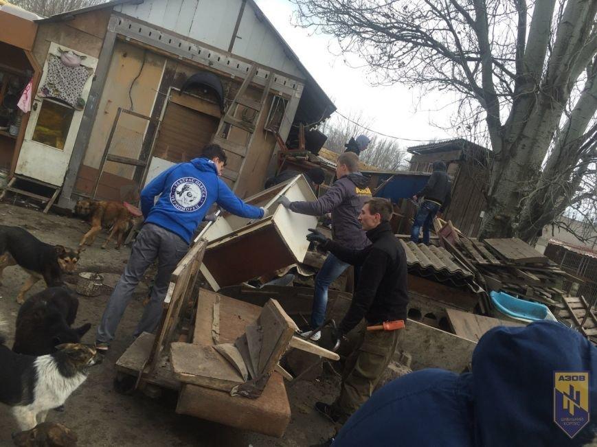 Одесские патриоты обвиняют городскую власть в наплевательском отношении к животным (ФОТО) (фото) - фото 1