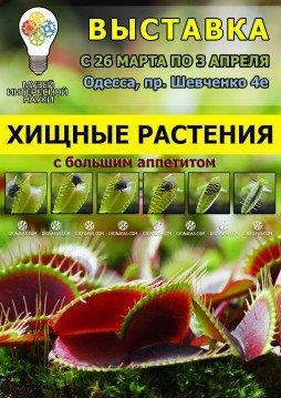 e6e0f96574a549528f0e0cfbddb76b91 Посетить 30 стран и увидеть ожившие статуи: 5 вариантов прекрасного вечера в Одессе
