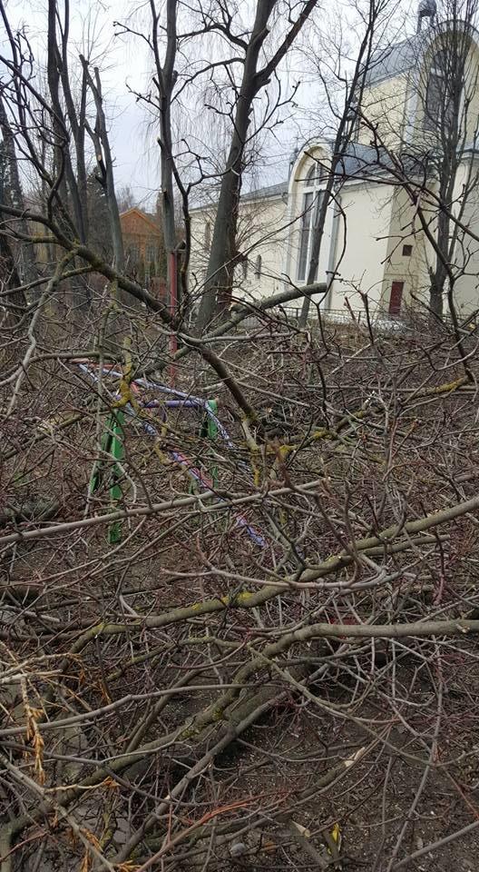 У Тернополі працівники ЖЕКу під час обрізки дерев понищили качелю та турнік (Фото), фото-1