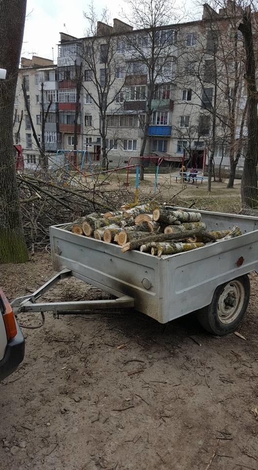 У Тернополі працівники ЖЕКу під час обрізки дерев понищили качелю та турнік (Фото), фото-3