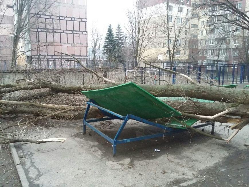 На Соколе огромное дерево рухнуло прямо возле детской площадки (ФОТО) (фото) - фото 3