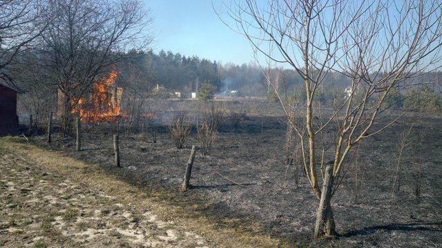 Рятувальники попереджають про заборону спалювання сухої трави (фото) - фото 1