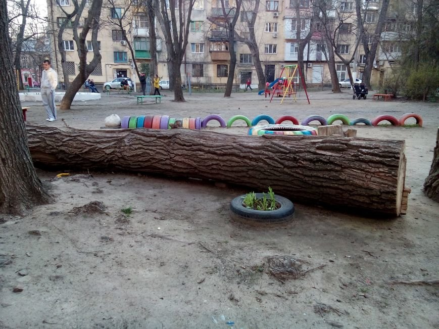 Опасный аттракцион: Одесские коммунальщики забыли спиленное дерево на детской площадке (ФОТО) (фото) - фото 1