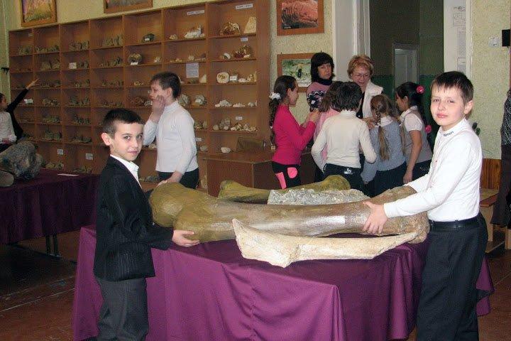 Краматорские школьники принесли домой обломки окаменевшего дерева (фото) - фото 2