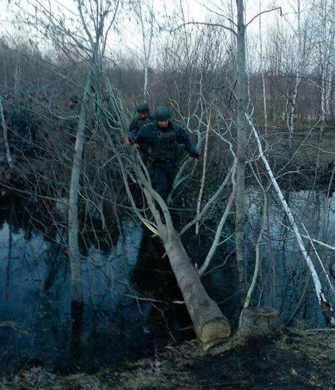 На Житомирщине правоохранители проводят масштабные меры по пресечению незаконной добычи янтаря (фото) - фото 1