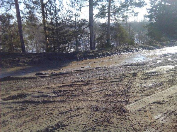 Горожане бьют тревогу: кто ответит за грязь на дороге? (фото) - фото 2
