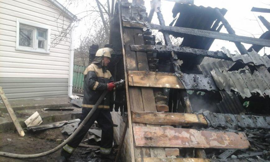 В Киевской области во время пожара погибла 12-летняя девочка (ФОТО), фото-1