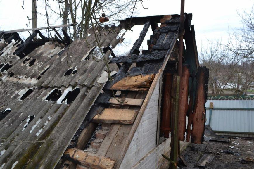 В Киевской области во время пожара погибла 12-летняя девочка (ФОТО), фото-4