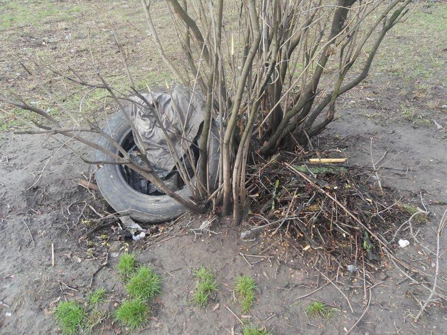 На Южном вокзале спилили около тридцати деревьев (ФОТО) (фото) - фото 2