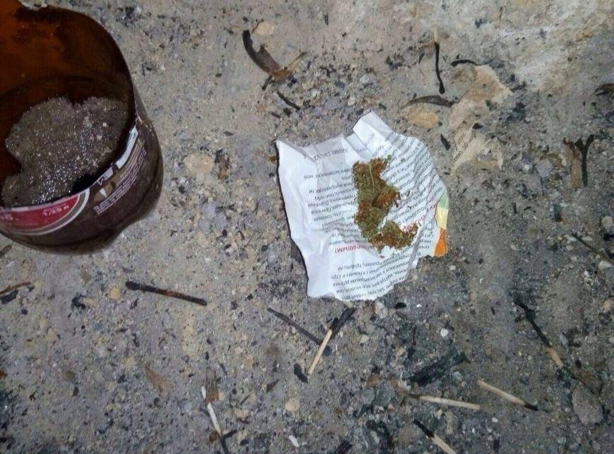 В Николаеве на Намыве полицейские поймали на горячем великовозрастных растаманов (ФОТО) (фото) - фото 1