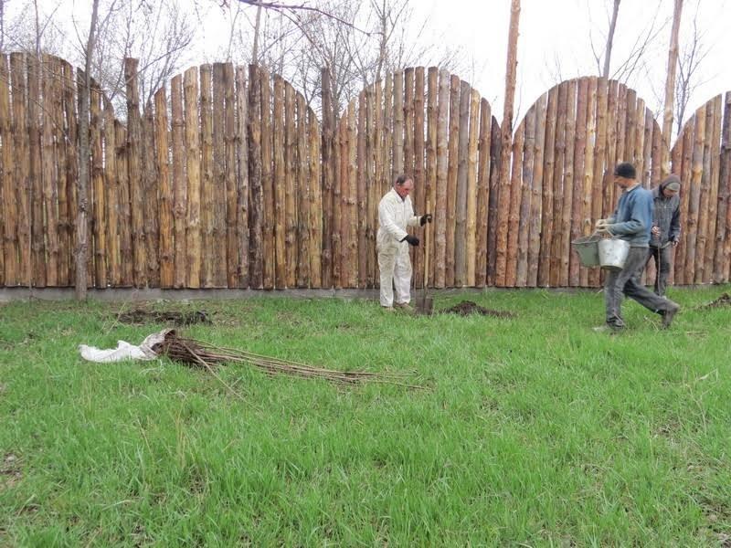 В мариупольском  зоопарке высадили 140 деревьев (ФОТО), фото-3