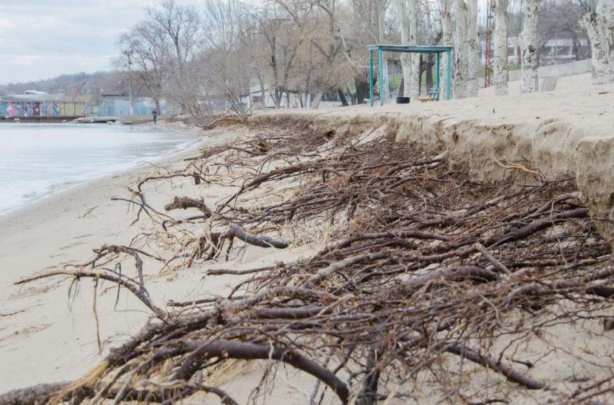 Последствия шторма: в Мариуполе ветер ломал деревья и срывал крыши остановок (ФОТО), фото-1