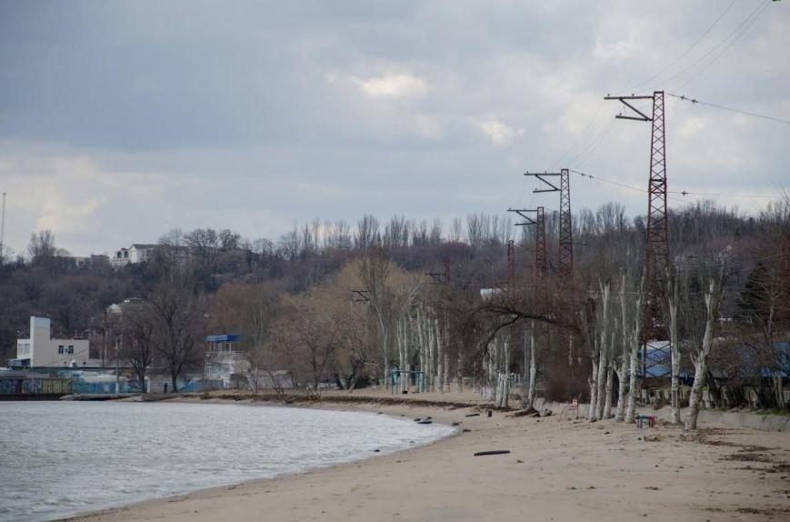Последствия шторма: в Мариуполе ветер ломал деревья и срывал крыши остановок (ФОТО), фото-6