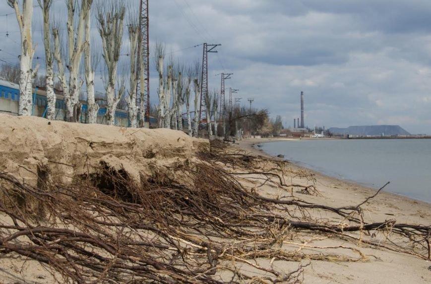 Последствия шторма: в Мариуполе ветер ломал деревья и срывал крыши остановок (ФОТО), фото-5