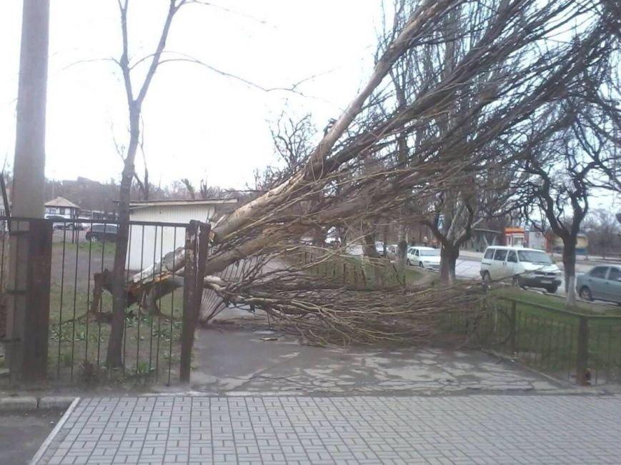 Последствия шторма: в Мариуполе ветер ломал деревья и срывал крыши остановок (ФОТО) (фото) - фото 1