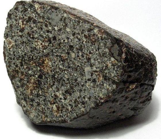 хондрит2