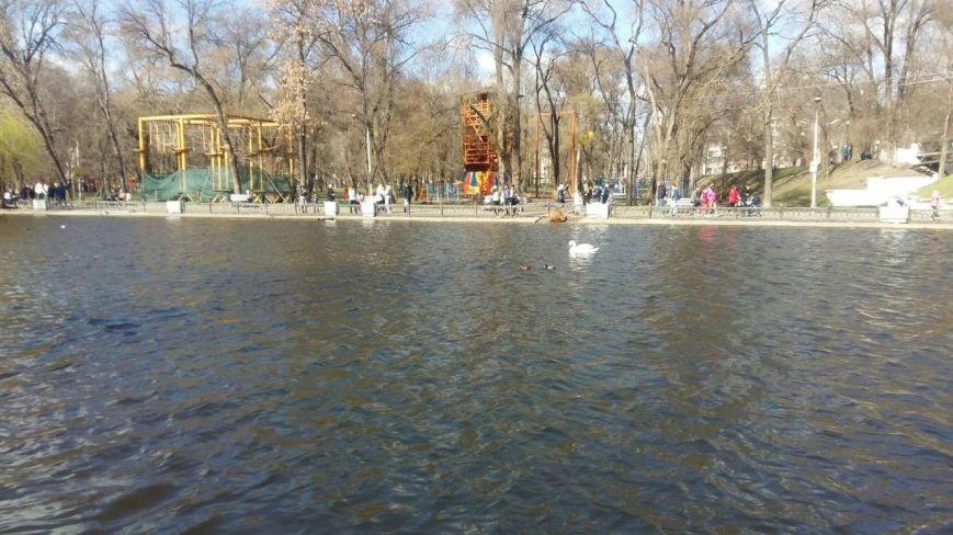 Выходные в Днепропетровске: как горожане наслаждались первыми теплыми днями апреля (ФОТО) (фото) - фото 3