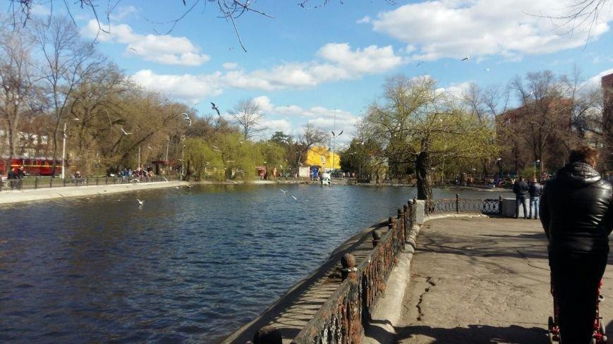 Выходные в Днепропетровске: как горожане наслаждались первыми теплыми днями апреля (ФОТО) (фото) - фото 8