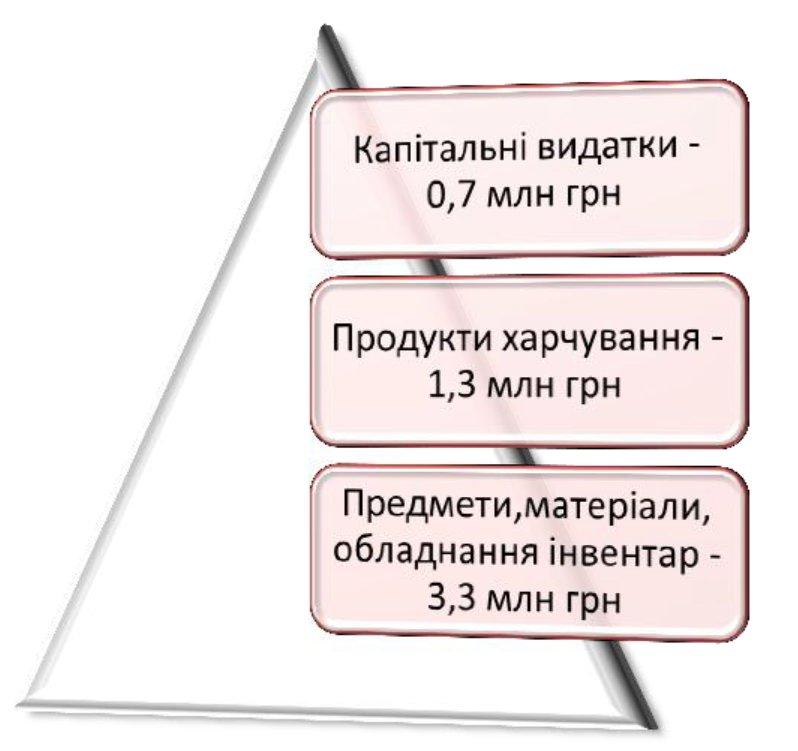 Баран-Ольга-для-змі-2