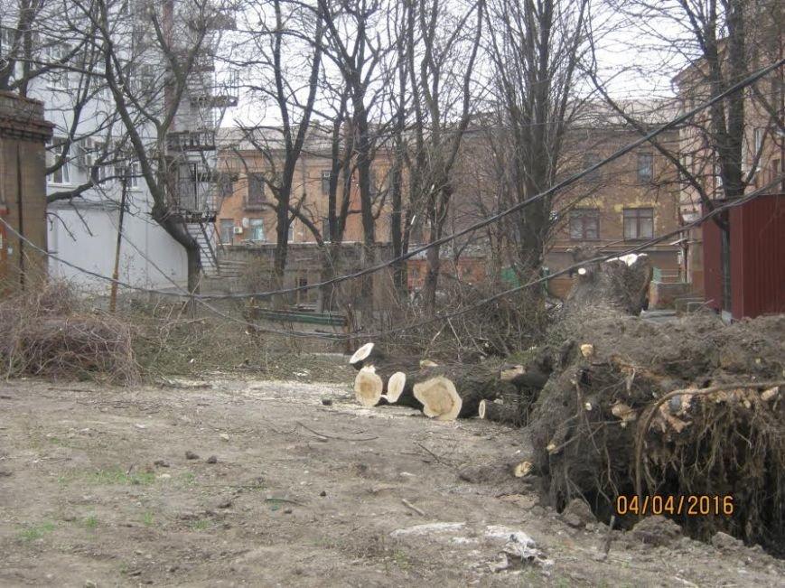 Коммунальные службы продолжают ликвидировать последствия шторма в Мариуполе (ФОТО), фото-3