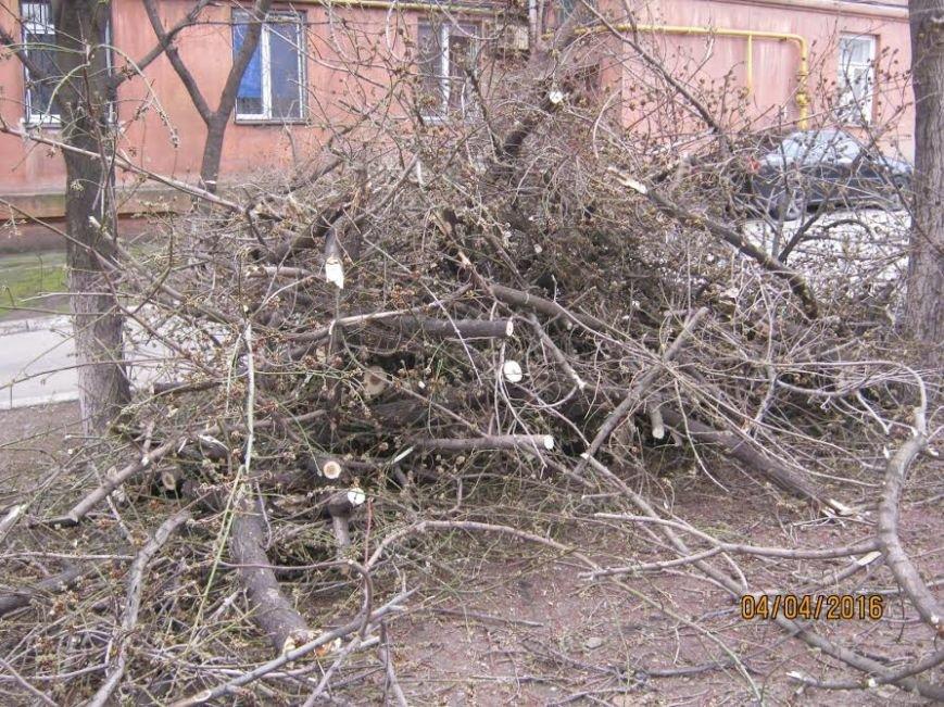 Коммунальные службы продолжают ликвидировать последствия шторма в Мариуполе (ФОТО), фото-2