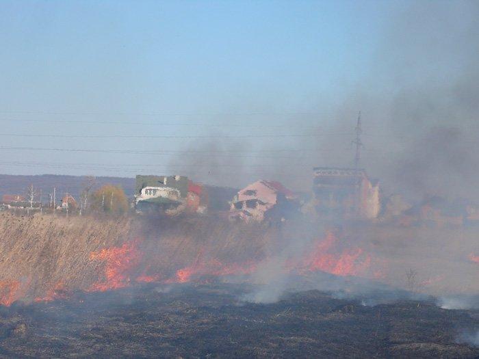 За минулу добу на Закарпатті вісім разів горіла суха трава (фото) - фото 1