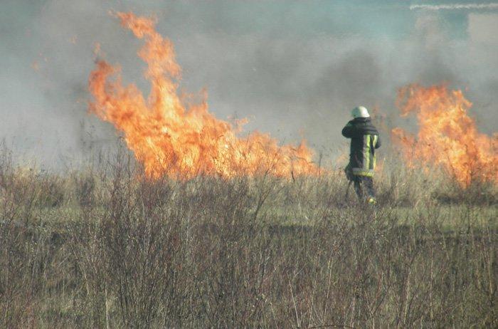 За минулу добу на Закарпатті вісім разів горіла суха трава (фото) - фото 2