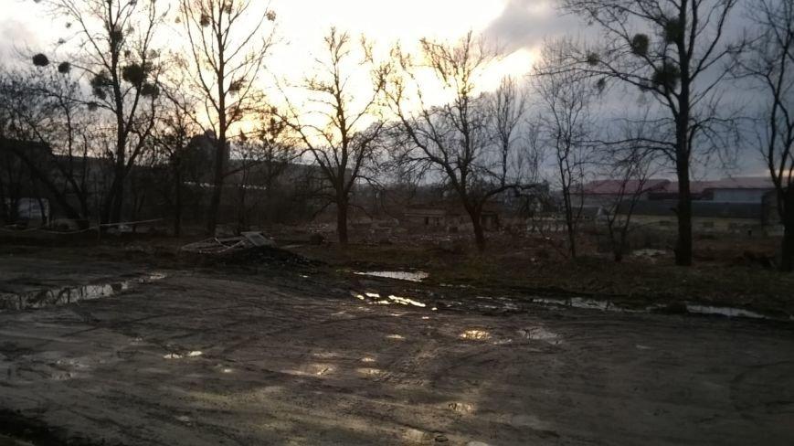 Забудовник не відшкодував збитків за самовільну вирубку на вул.Стрийській, 108 (ФОТО) (фото) - фото 1