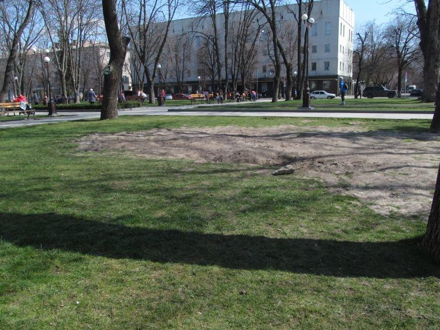 Разрушенный в сквере Бабаева газон восстановится только к осени (ФОТО), фото-3