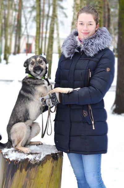«Главный минус в местах для выгула собак - наличие людей». Волонтер приюта для собак из Новополоцка рассказала, что считает важным в законопроекте «Об обращении с животными» (фото) - фото 2