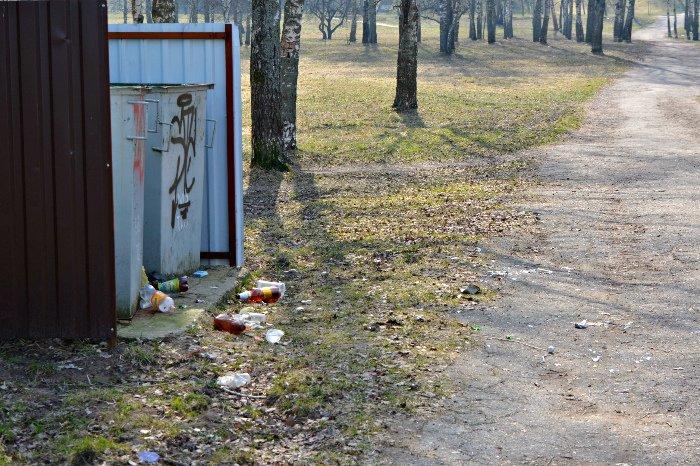 «Зробiм?». Стоит ли Новополоцку и Полоцку присоединиться к акции по всемирной уборке 9 апреля, фото-6