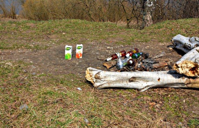 «Зробiм?». Стоит ли Новополоцку и Полоцку присоединиться к акции по всемирной уборке 9 апреля, фото-3