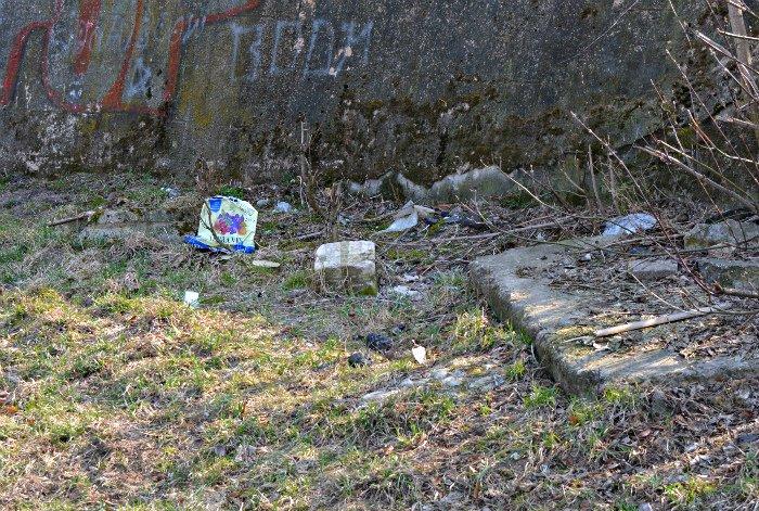 «Зробiм?». Стоит ли Новополоцку и Полоцку присоединиться к акции по всемирной уборке 9 апреля, фото-8
