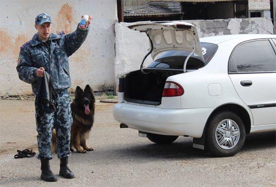 Кіровоградські поліцейські запросили свою майбутню зміну на екскурсію (ФОТОРЕПОРТАЖ) (фото) - фото 11