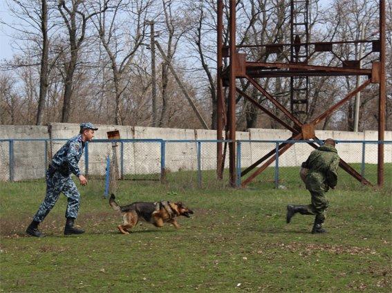 Кіровоградські поліцейські запросили свою майбутню зміну на екскурсію (ФОТОРЕПОРТАЖ) (фото) - фото 9