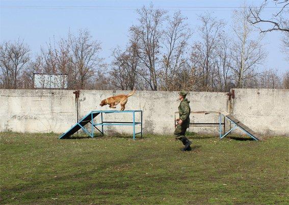 Кіровоградські поліцейські запросили свою майбутню зміну на екскурсію (ФОТОРЕПОРТАЖ) (фото) - фото 6