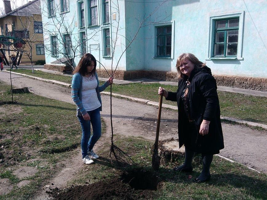 Жители Северска делают свой город чище, фото-4