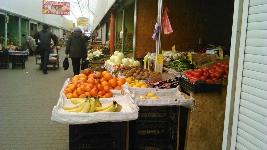 В Одессе стремительно дешевеет редиска (ФОТО) (фото) - фото 1