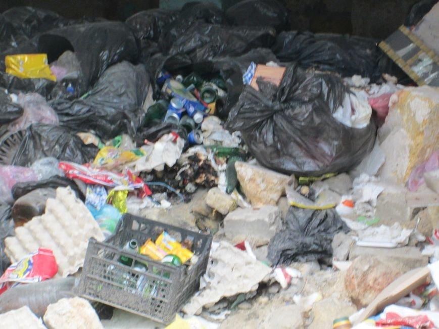 7b91db7f0f8350a08a1dfff7cfec3201 В центре Одессы мусорная свалка шокирует туристов