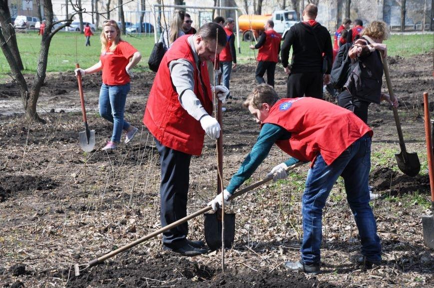 Краматорск присоединился к всемирной акции «Дерево мира», фото-12