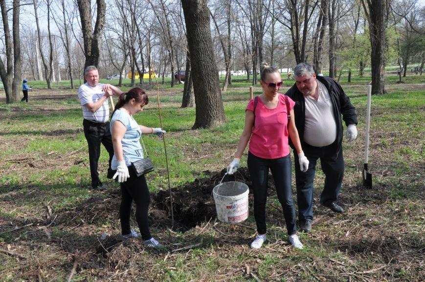 Краматорск присоединился к всемирной акции «Дерево мира», фото-7