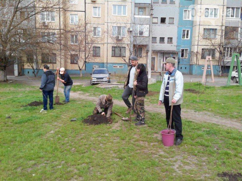 Криворожане высадили на Восточном более 200 саженцев красного клена (ФОТО), фото-2