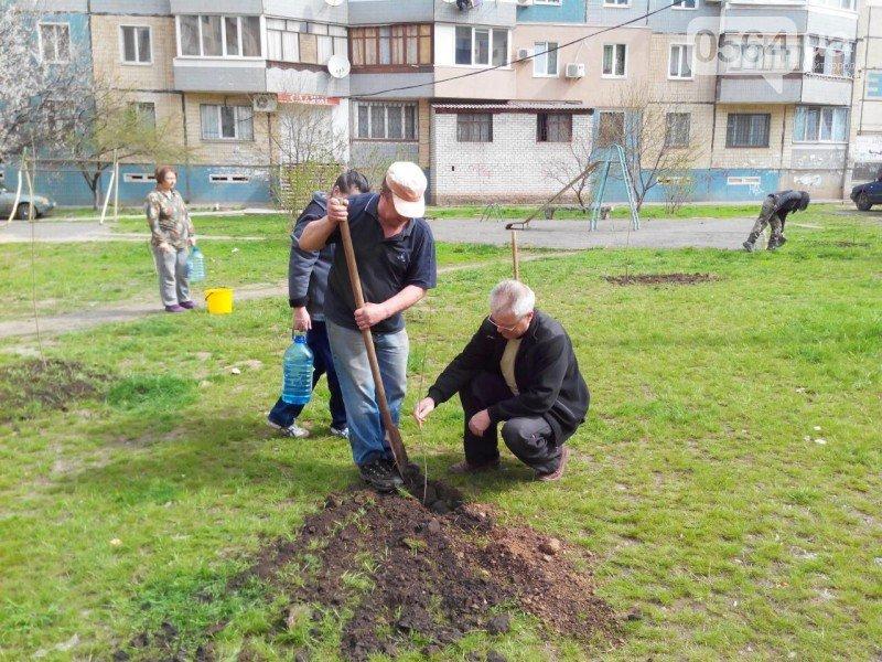 Криворожане высадили на Восточном более 200 саженцев красного клена (ФОТО), фото-8