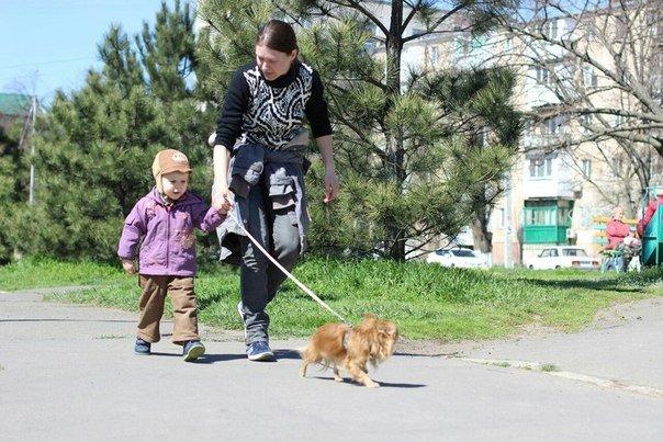 В Черноморске прошло первенство по каникроссу (фото) - фото 7