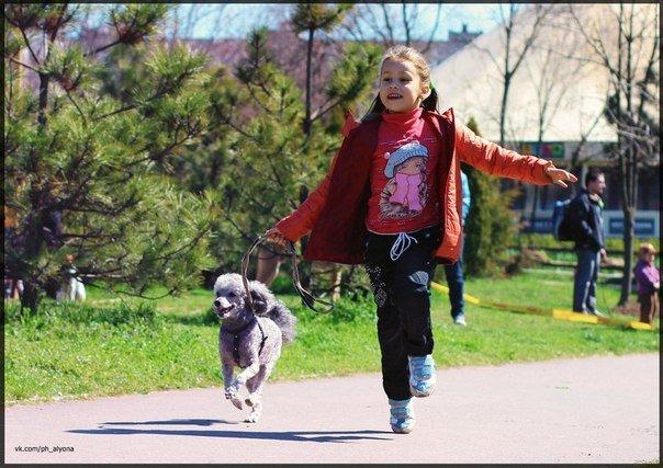 В Черноморске прошло первенство по каникроссу (фото) - фото 3