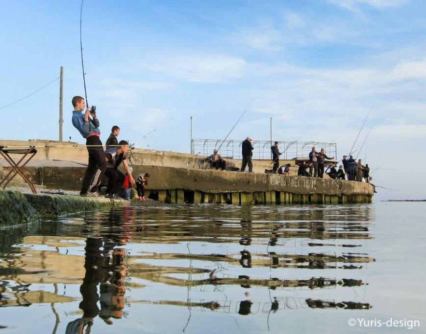 Бердяны массово вышли на рыбалку (ФОТОРЕПОРТАЖ) (фото) - фото 6